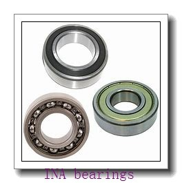 INA RASEY60-JIS bearing units