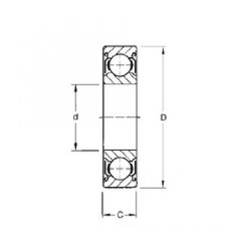 CYSD 6036-ZZ deep groove ball bearings