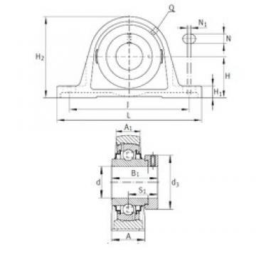 INA RAK2 bearing units