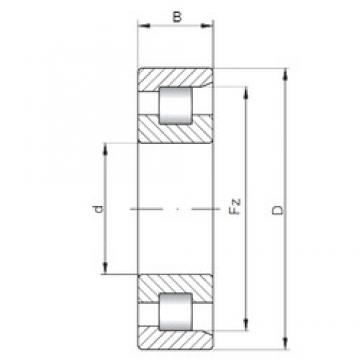 ISO NF211 cylindrical roller bearings