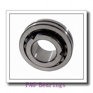 FAG 22344-E1-K + H2344X spherical roller bearings