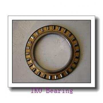 IKO NAS 5028ZZNR cylindrical roller bearings