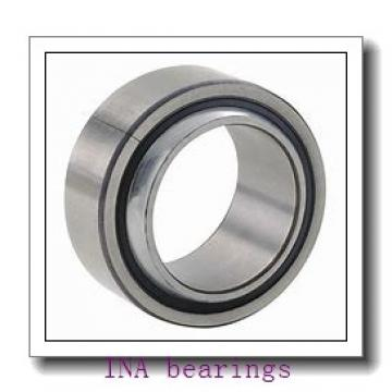 INA SL045007-PP cylindrical roller bearings