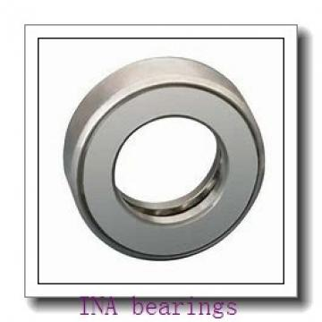 INA NA4900 needle roller bearings