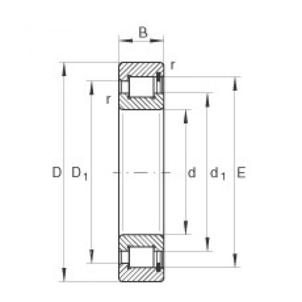 INA SL182920 cylindrical roller bearings #2 image