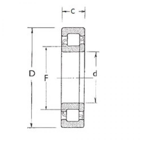 FBJ NUP317 cylindrical roller bearings #2 image