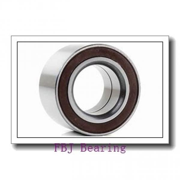FBJ 23100/23256 tapered roller bearings #1 image