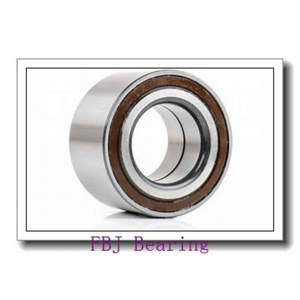 FBJ NUP317 cylindrical roller bearings #1 image