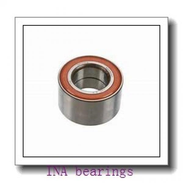 INA 294/1000-E1-MB thrust roller bearings #1 image